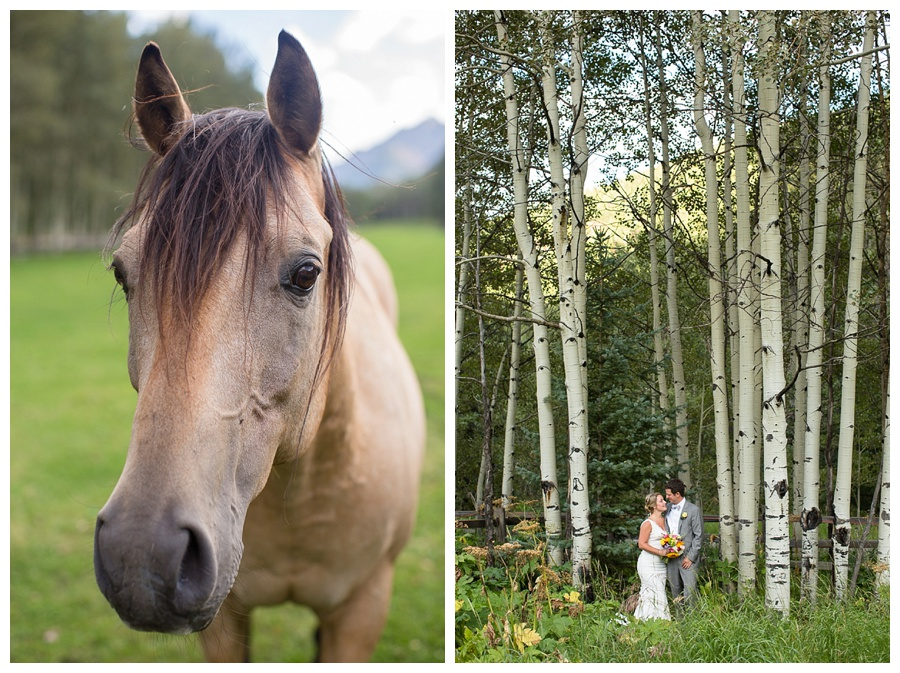 bride and groom shot in tall aspens near Maroon Bells CO