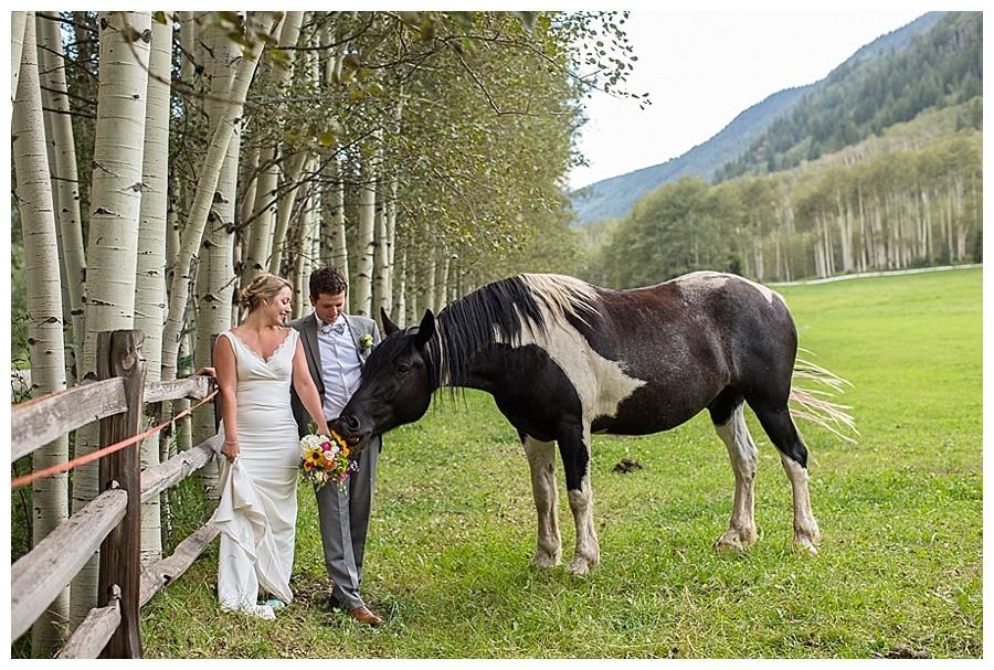 Horse Crashes Wedding Photo Shoot